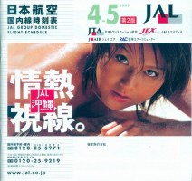 jal_200204_dom